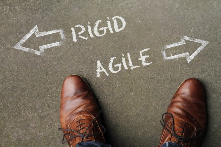 2019 – The Year of the Agile Organization